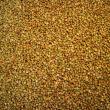 Picture of Organic Activated Buckwheat 500g