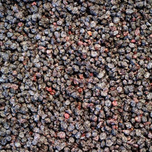 Picture of Organic Dried Currants 500g