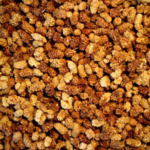 Picture of Organic Dried Mulberries 1kg