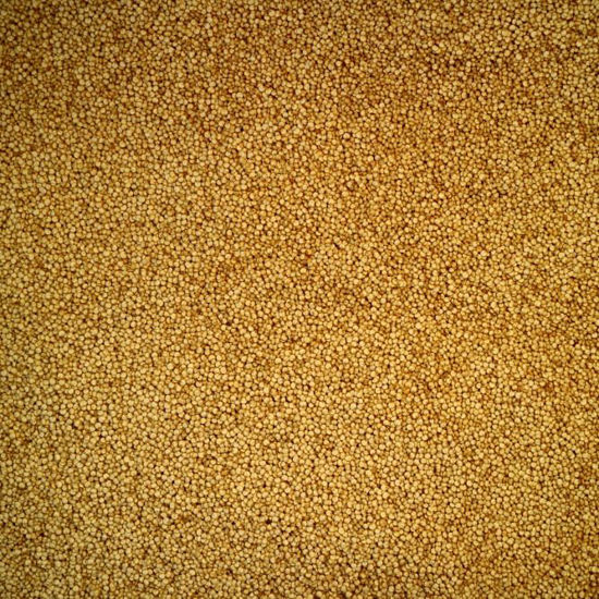 Picture of Organic Quinoa