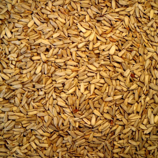 Picture of Organic Sunflower Kernels